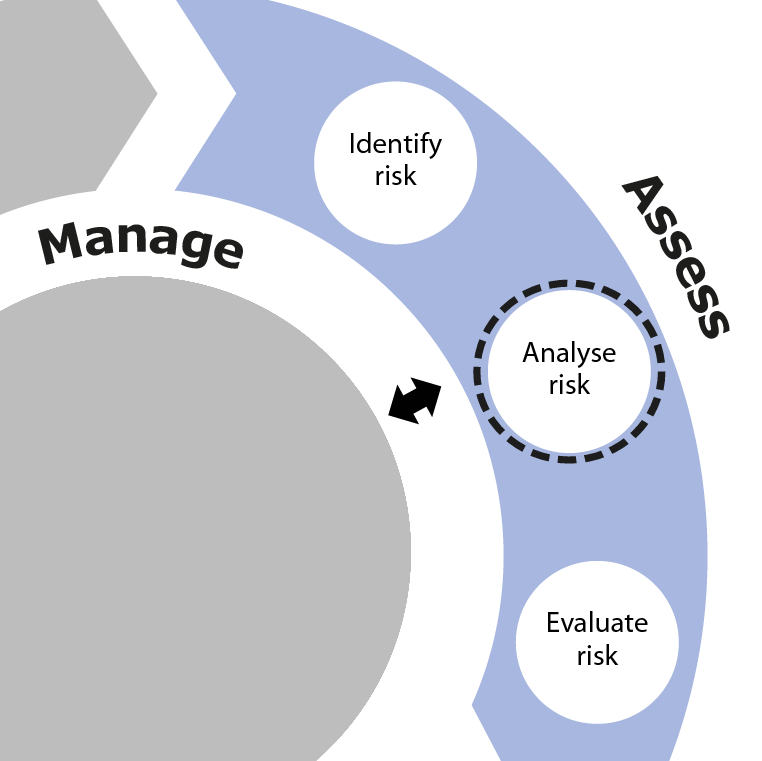 Analyse risk is the second activity in the Assess phase of SSA