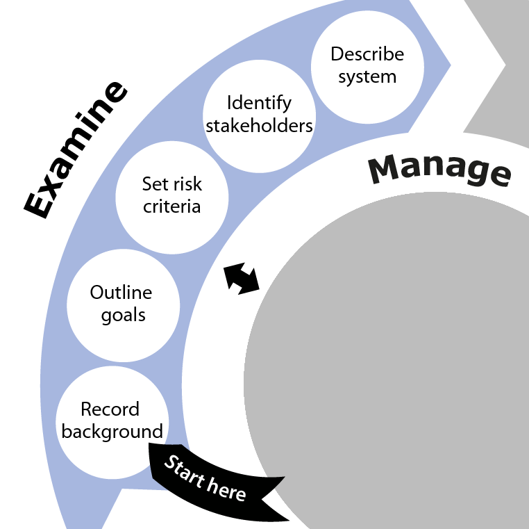 Diagram showing the Examine phase as part of the overall SSA process. This phase involves Record background, Outline goals, Set risk criteria, Identify stakeholders and Describe system.
