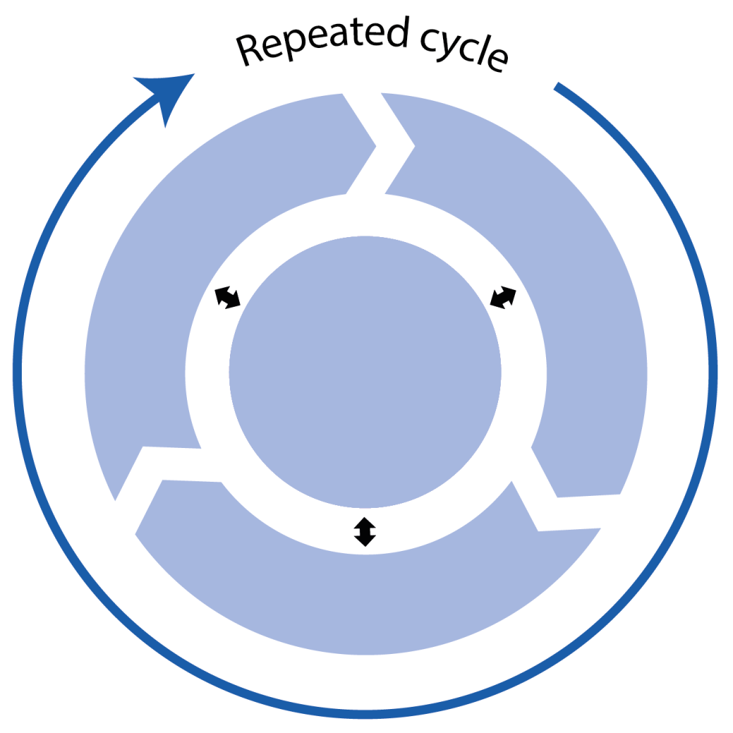 An SSA involves repeated cycles of the phases
