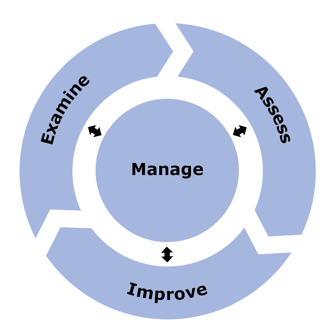 The SSA process consists of the Examine, Assess and Implement phases, guided and informed by Manage