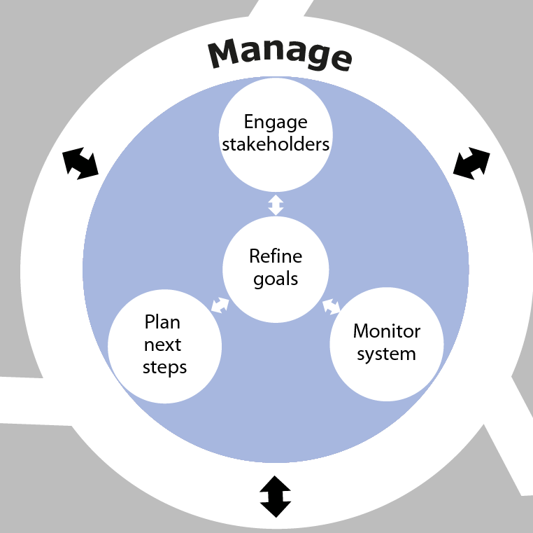Diagram showing the Manage phase as part of the overall SSA process. This phase involves Plan next steps, Refine goals, Engage stakeholders and Monitor system.